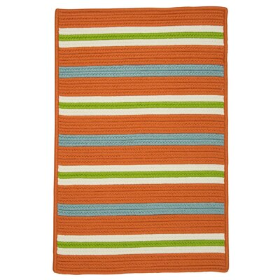 Painter Stripe Tangerine Indoor/Outdoor Area Rug Rug Size: 5 x 7