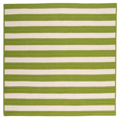 Georg Bright Lime Indoor/Outdoor Area Rug Rug Size: Square 10