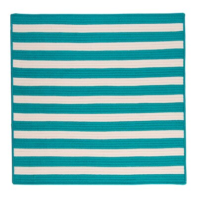 Georg Turquoise Indoor/Outdoor Area Rug Rug Size: Square 12