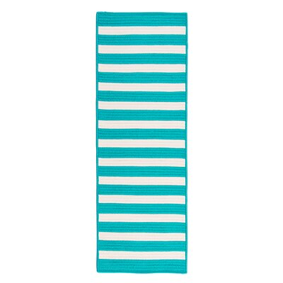 Georg Turquoise Indoor/Outdoor Area Rug Rug Size: Runner 2 x 12