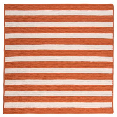 Georg Tangerine Indoor/Outdoor Area Rug Rug Size: Square 12