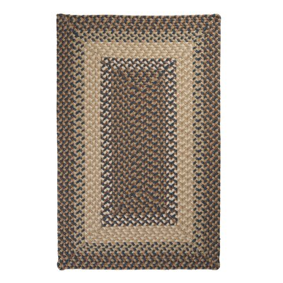 Tiburon Stone & Blue Braided Indoor/Outdoor Area Rug Rug Size: 4 x 6