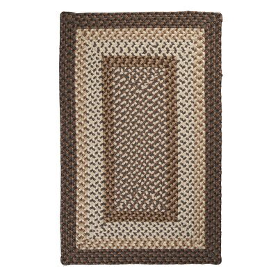 Tiburon Dockside Braided Indoor/Outdoor Area Rug Rug Size: Rectangle 4 x 6