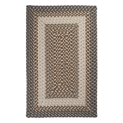 Tiburon Misted Grey Braided Indoor/Outdoor Area Rug Rug Size: 2 x 3