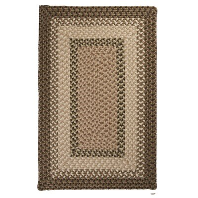 Tiburon Spruce Green Braided Indoor/Outdoor Area Rug Rug Size: 2 x 3