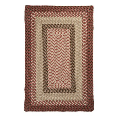 Tiburon Rusted Rose Braided Indoor/Outdoor Area Rug Rug Size: 3 x 5