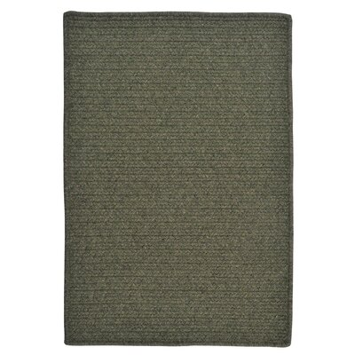 Courtyard Olive Rug Rug Size: Rectangle 4 x 6