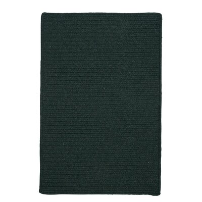 Courtyard Cypress Green Rug Rug Size: Runner 2 x 6, Fringe: Included