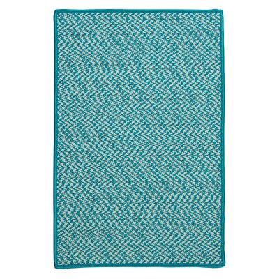 Outdoor Houndstooth Tweed Turquoise Area Rug Rug Size: Square 12