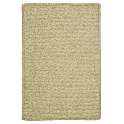 Simple Chenille Sprout Green Indoor/Outdoor Area Rug Rug Size: 3' x 5'