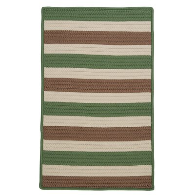 Georg Moss-stone Indoor/Outdoor Area Rug Rug Size: Rectangle 2 x 4