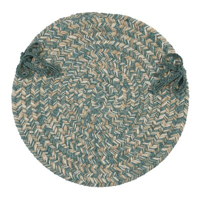 Tremont Chair Pad Color: Teal