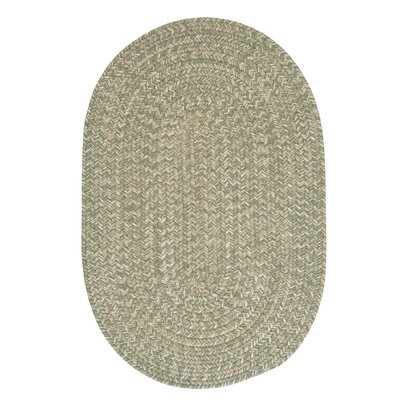 Tremont Palm Area Rug Rug Size: Oval 2 x 4