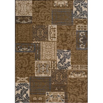 Sherill Brown Indoor Area Rug Rug Size: 53 x 76