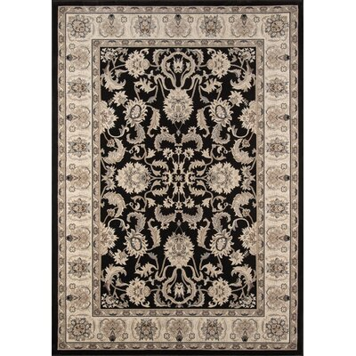 Mira Monte Charcoal Area Rug Rug Size: Rectangle 53 x 77