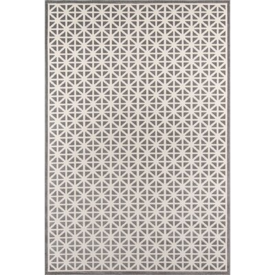 Sandoval Gray Indoor/Outdoor Area Rug Rug Size: 2 x 3