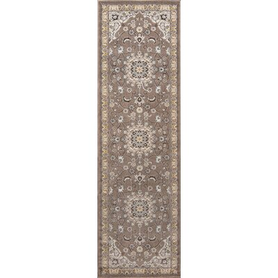 Burrows Brown Indoor/Outdoor Area Rug Rug Size: Runner 23 x 76