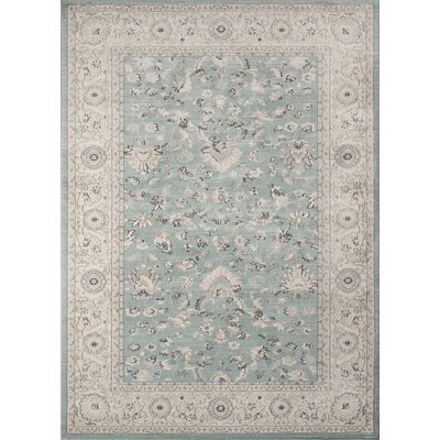 Neuville Blue Area Rug Rug Size: Rectangle 53 x 76