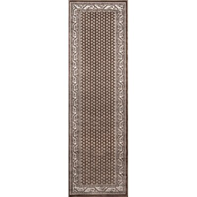 Robichaux Brown Indoor/Outdoor Area Rug Rug Size: Runner 23 x 76