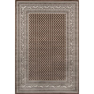 Robichaux Brown Indoor/Outdoor Area Rug Rug Size: 53 x 76