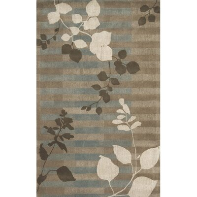 Nev Rug Rug Size: Rectangle 5 x 8