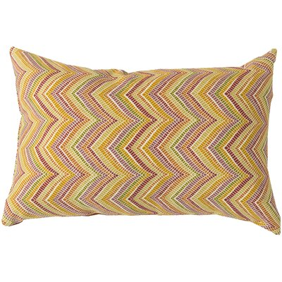 Charm in Chevron Outdoor Pillow Cover Color: Cobalt