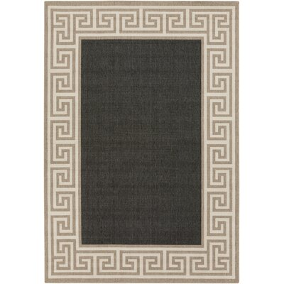 Pearce Black/Tan Indoor/Outdoor Area Rug Rug Size: Rectangle 36 x 56
