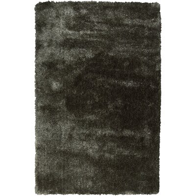 Kimber Dark Brown Area Rug Rug Size: 5 x 8