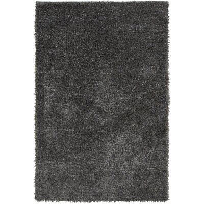 James Hand Woven Gray Rug Rug Size: Rectangle 5 x 8