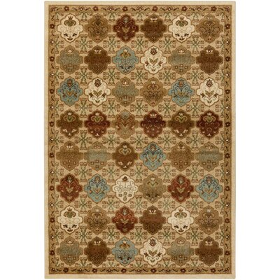 Putterham Chocolate Area Rug Rug Size: 52 x 76