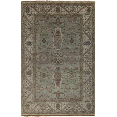 Orland Sea Foam/Taupe Area Rug Rug Size: Rectangle 56 x 86