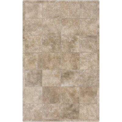 Everist Light Gray/Taupe Area Rug Rug Size: 2 x 3