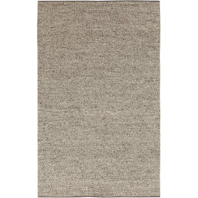 Sunderland Light Gray Area Rug Rug Size: Rectangle 33 x 53