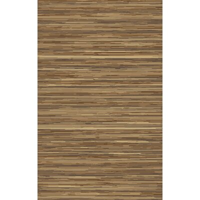 Westville Hand-Woven Olive Area Rug Rug Size: Rectangle 5 x 8