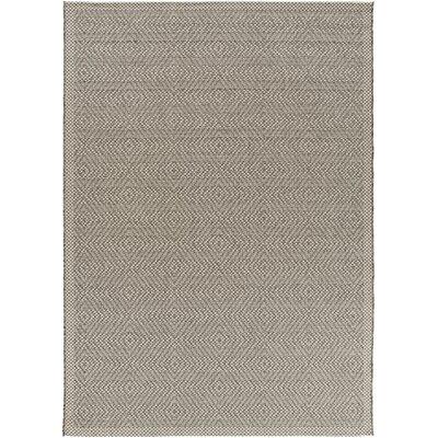 Janessa Charcoal Indoor/Outdoor Area Rug Rug Size: 53 x 76