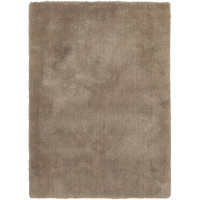 Braun Hand Woven Desert Sand Area Rug Rug Size: Rectangle 76 x 96