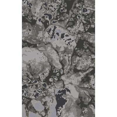 Scylla Charcoal/Gray Area Rug Rug Size: Rectangle 5 x 8