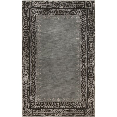 Alessandro Gray Area Rug Rug Size: Rectangle 33 x 53
