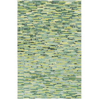 Denver Hand-Woven Lime/Kelly Green Area Rug Rug Size: 2 x 3