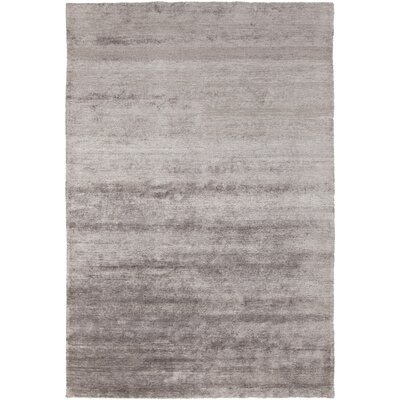 Theodore Grey Area Rug Rug Size: Rectangle 2 x 3