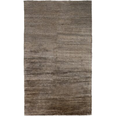 Theodore Mocha Area Rug Rug Size: Rectangle 2 x 3