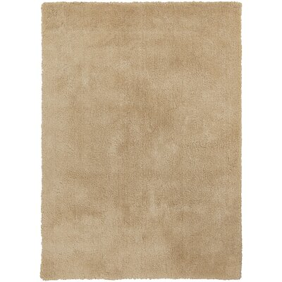 Braun Blond Area Rug Rug Size: Rectangle 2 x 3