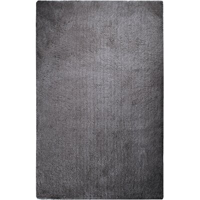 Braun Elephant Gray Solid Area Rug Rug Size: Rectangle 76 x 96