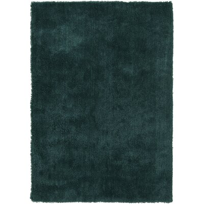 Braun Hand Woven Sea Blue Area Rug Rug Size: Rectangle 5 x 7