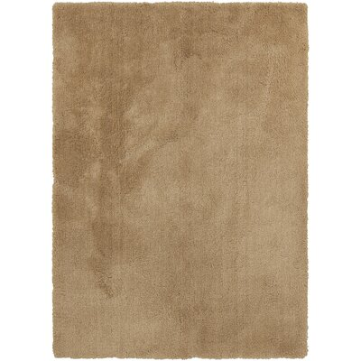 Braun Camel Area Rug Rug Size: Rectangle 76 x 96