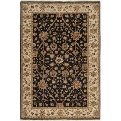 Derosier Black Area Rug Rug Size: Rectangle 2 x 3