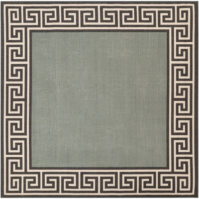 Pearce Moss/Green Indoor/Outdoor Area Rug Rug Size: Square 89