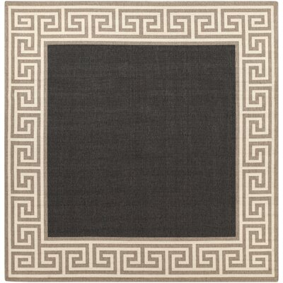Pearce Black/Tan Indoor/Outdoor Area Rug Rug Size: Square 89