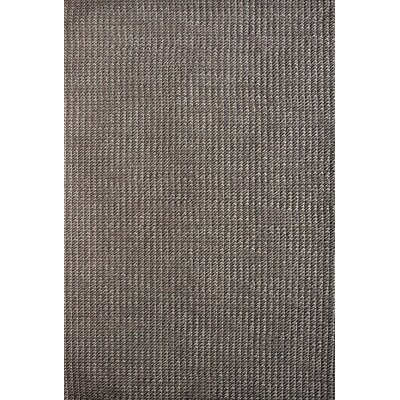 Lazzaro Charcoal Area Rug Rug Size: Rectangle 5 x 76