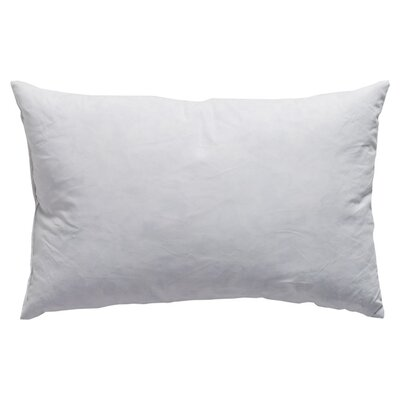 Down and Feathers Pillow Size: 18 H x 18 W x 4 D